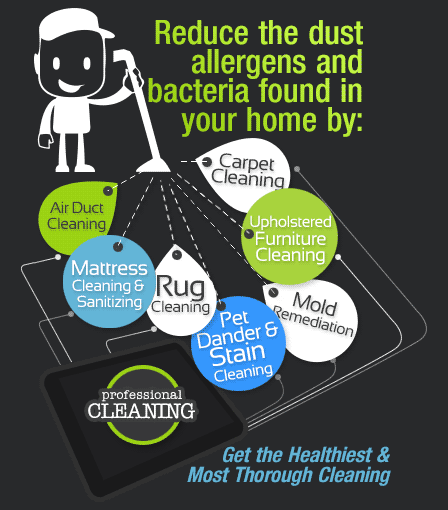 Allergen Dust Removal Treatment